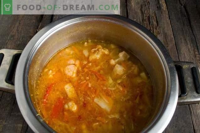 Zuppa magra con cavolfiore, cocco e pomodori