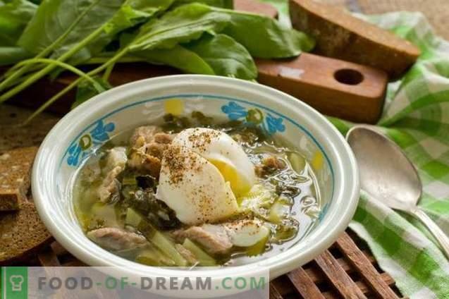 Zuppa di acetosa con carne e uovo