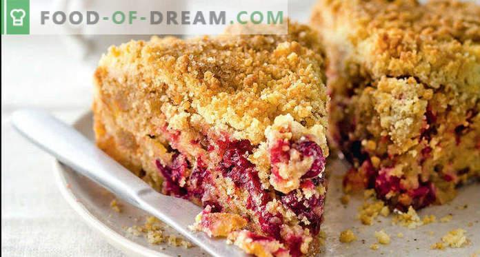 Frozen Cranberry Pie