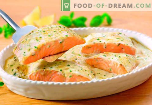 Salmone in salsa cremosa - le migliori ricette. Come cucinare correttamente e gustoso salmone in salsa cremosa.
