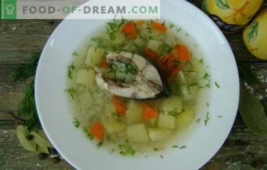Supa de pește de crap - un curs parfumat și sănătos. Rețete supa crap: clasic, cu gălbenuș, mei, orz, etc.