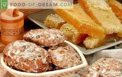 Gingerbread a casa - ricette. Biscotti di pan di zenzero su kefir, miele di pan di zenzero: come fare un delizioso pan di zenzero a casa