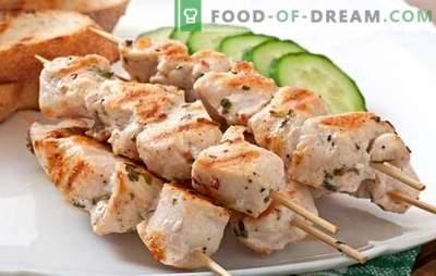 Spiedini su spiedini al forno di maiale - gli aromi dell'estate. Ricette spiedini di kebab nel forno di maiale nella manica, in un foglio, in un barattolo