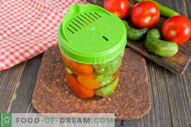 Cetrioli sottaceto con pomodori - estate assortiti per l'inverno