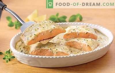 Salmone in crema - le ricette dell'autore più interessanti. Segreti di cucinare il salmone in crema con funghi, patate, caviale