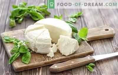 Il formaggio al latte acido è un prodotto lattiero-caseario naturale. Varianti di cottura del formaggio dallo yogurt a casa