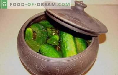 Le amanti preferiscono fare cetrioli salati nella padella! Ricette di cetrioli salati in padella e piatti con la loro partecipazione