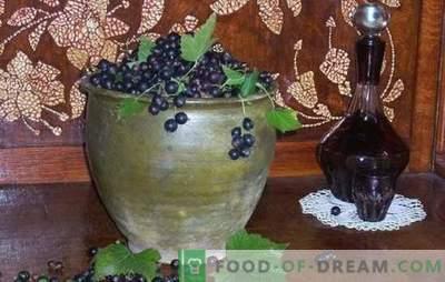 Come si fa il vino al ribes nero? Cinque ricette per i semplici vini di ribes nero fatti in casa: giovane, dolce, liquore