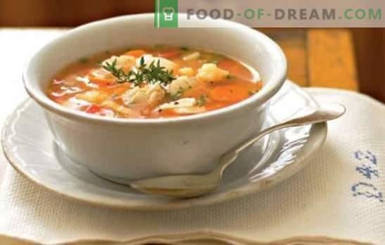 L'orecchio con miglio è semplice, soddisfacente e utile. Ricette deliziosa zuppa di pesce con miglio di fiume e pesce di mare sul fornello e nella pentola a cottura lenta