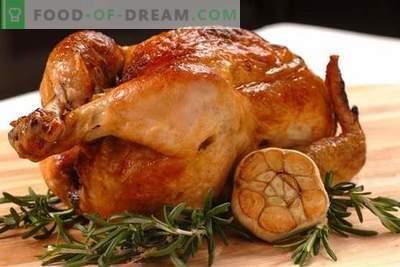 Pollo con aglio - le migliori ricette. Come cucinare correttamente e gustoso pollo con aglio.