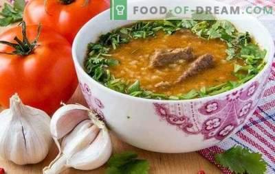 Kharcho in georgiano è una zuppa tradizionale della cucina georgiana. Come cucinare kharcho in georgiano con carne di manzo, agnello
