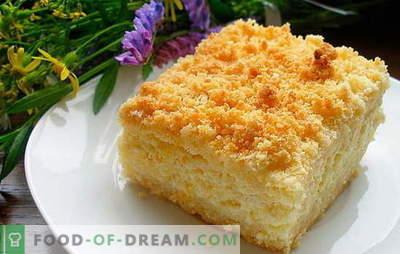 Pie mit Quark und Äpfeln ist ein gesunder Genuss. Rezepte für Hüttenkäse und Apfelkuchen: Rationen mit Vitaminen füllen