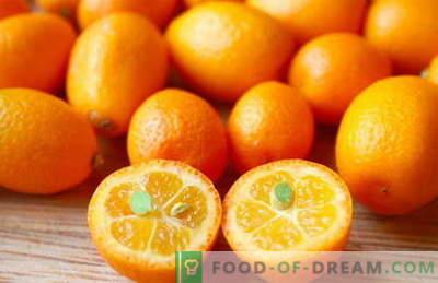 Kumquat - proprietà utili e uso in cucina. Ricette con kumquat.