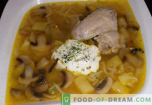 Zuppa di brodo di pollo - le migliori ricette. Come cucinare correttamente e gustoso zuppa di pollo in brodo.