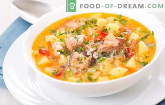 Zuppa di pesce con riso è un primo piatto leggero e saporito per il pranzo. Le migliori ricette per cucinare zuppe di pesce con riso