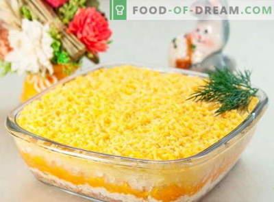 Insalata Mimosa - le migliori ricette. Come preparare correttamente e gustosa insalata Mimosa.