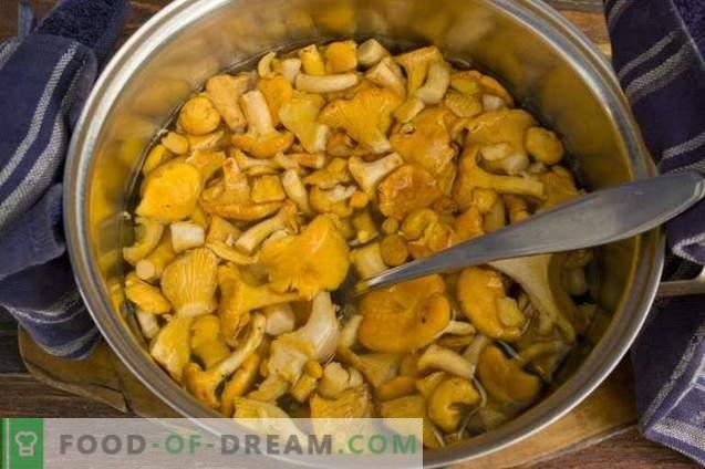 Lentil cutlets with chanterelles