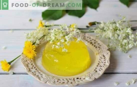 Gelée au citron - dessert savoureux, qui est toujours le chemin. Conditions de cuisson et variantes de plats à base de gelée de citron