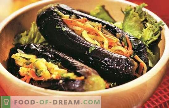 Melanzane ripiene di verdure per l'inverno - spuntino pronto. Le migliori ricette per melanzane farcite con verdure per l'inverno