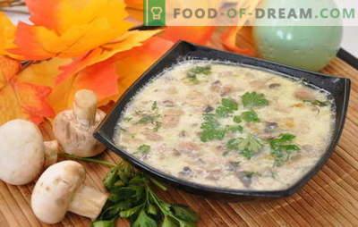 Estremamente semplice ed eccezionalmente gustoso - zuppa di funghi con patate. Selezione di zuppe di champignon con patate