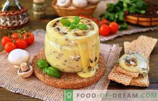 Il formaggio fuso fatto in casa della ricotta è preparato professionalmente. Vacanza di gusto con ricotta e formaggio elaborato ricette a casa