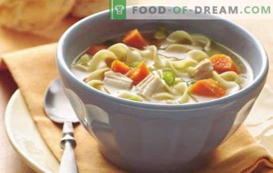 Zuppe semplici per tutti i giorni - 7 migliori ricette. Come cucinare una semplice zuppa per tutti i giorni: funghi, pollo, pesce, ecc.