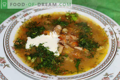 Come cucinare la zuppa di crauti con carne di manzo, maiale, pollo