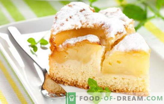 I muffin fatti in casa sono sempre speciali: torte al kefir alla mela. Ricette semplici per impasti e ripieni per torte su mela kefir