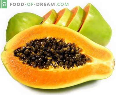 Papaya - descrizione, proprietà utili, uso in cucina. Ricette con papaia.