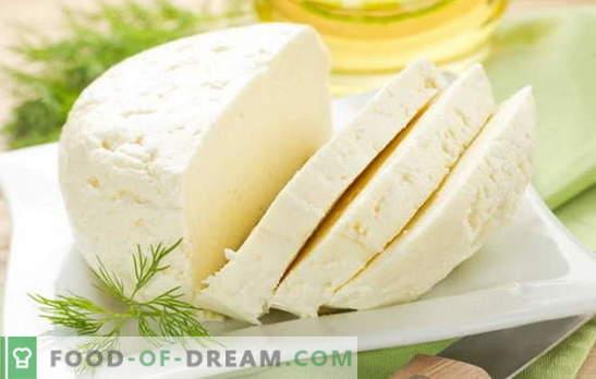 Най-добрите рецепти за домашно приготвено сирене от краве мляко. Сирене от краве мляко: основните правила за правене на домашно сирене