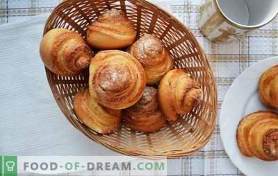 Panini di lumache - dolci intricati per il tè. Ricette di lumache fragranti e saporite con zucchero, semi di papavero, cocco