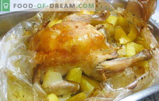 Um frango em uma manga com batatas no forno é super fácil! Receitas de frango na manga com batatas no forno inteiro e fatias