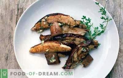 Quanto cucinare i funghi e come farlo correttamente? Come cucinare funghi secchi e surgelati?