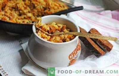 Pilaf al forno con maiale è una vera scoperta per le casalinghe! Ricette gustose, aromatiche e differenti pilaf dal maiale nel forno