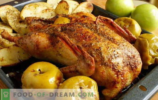 L'oca nel forno con patate è il re sul tavolo delle vacanze! Come si può cucinare l'oca nel forno con patate intere e pezzi