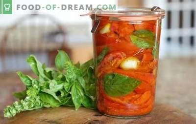 Pomidorai su actu žiemai: 8 geriausi įrodymai. Kaip padaryti, kad pomidorai būtų derinami su actu žiemą
