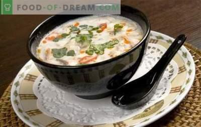 Zuppa di latte di cocco è un gioco di gusto! Ricette per zuppe diverse con latte di cocco per un menu esotico