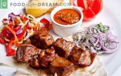 Spiedini in un multicooker - ricette e le migliori idee! Metodi di cottura di kebab in pentola a cottura lenta, ricette di carne, pollame, pesce