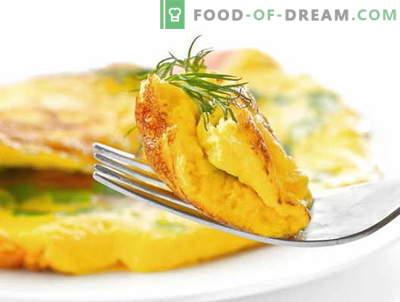 Omelette al latte - ricette collaudate. Come cucinare e fare una frittata con il latte.