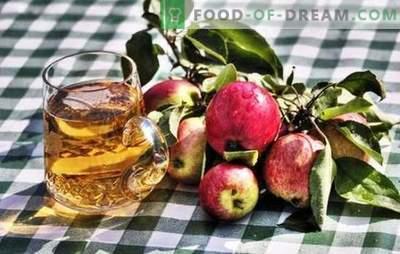 Produrre il sidro di mele fatto in casa - prodotto naturale! Come preparare le materie prime per il sidro di mele a casa