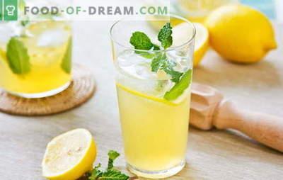 Citrinų gėrimas - energija ir vitaminai viename stikle. Citrinų gėrimų receptai: kietas limonadas arba šiltas infuzijos