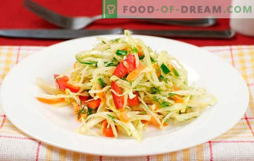 Cabbage salad with bell peppers - the best recipes. Cooking a salad with cabbage and sweet pepper.