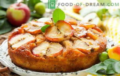 Cuocere con le mele - divorare entrambe le guance! Cucinare deliziosi pasticcini con le mele: torte, charlottes, croissant, pan di zenzero, strudel