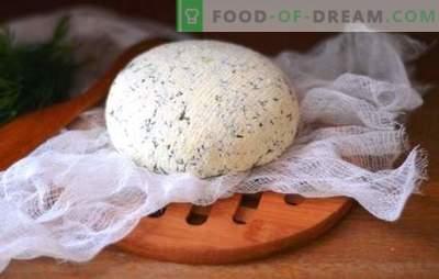 Сирење на Кефир дома - вкусна, економична, здрава. Како да направите различни видови сирење кефир дома