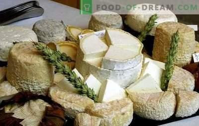 Come fare il formaggio di capra a casa: idee per le piccole imprese, tenendo conto delle sanzioni. Formaggio di capra fatto in casa - meglio!