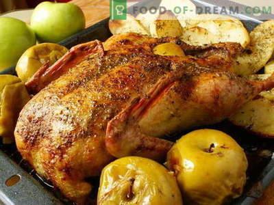 Anatra con mele - le migliori ricette. Come cucinare correttamente e gustoso un'anatra con le mele.