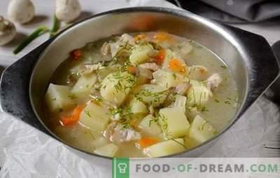 Zuppa di funghi con pollo e formaggio fuso: un primo piatto bello e sano. Foto-ricetta per zuppa con pollo e formaggio fuso: passo dopo passo