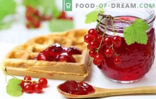 La gelatina di ribes rosso è un dessert luminoso e sano. Le migliori ricette di gelatina di ribes rosso con ricotta, panna, latte, vino