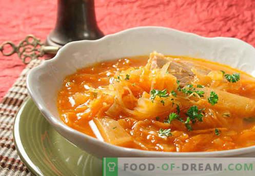 Zuppa di fresco e crauti. Come cucinare correttamente e gustoso zuppa acida, verde, magra in un fornello lento.