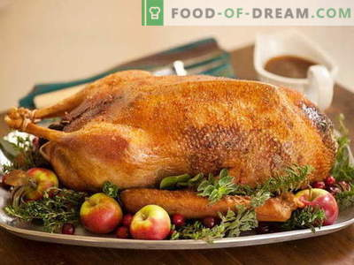 Oca al forno in forno - le migliori ricette. Come cucinare correttamente e gustoso oca nel forno.